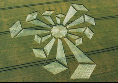 Corn fields from above